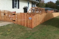 Fence by Chesley